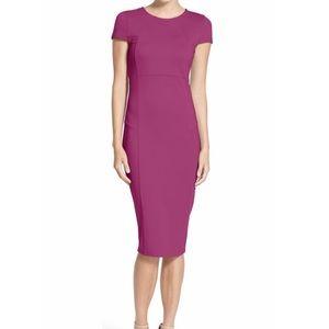 Felicity & Coco Ward Seamed Pencil Dress XS Purple